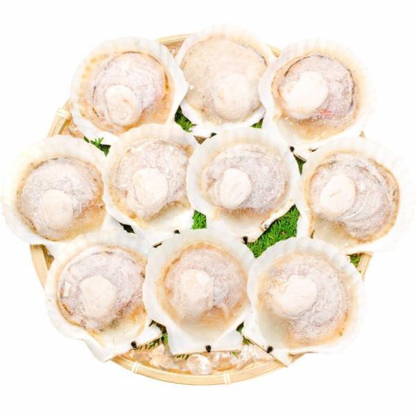 ホタテ ほたて 特大 片貝ほたて 40枚 10枚×4袋 (殻付きほたて 帆立 貝 バター焼き 浜焼き バーベキュー BBQ 業務用 築地市場 ギフト)|gourmet-no-ousama|08