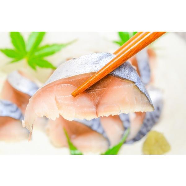 金華サバしめ鯖(1枚)|gourmet-no-ousama|08