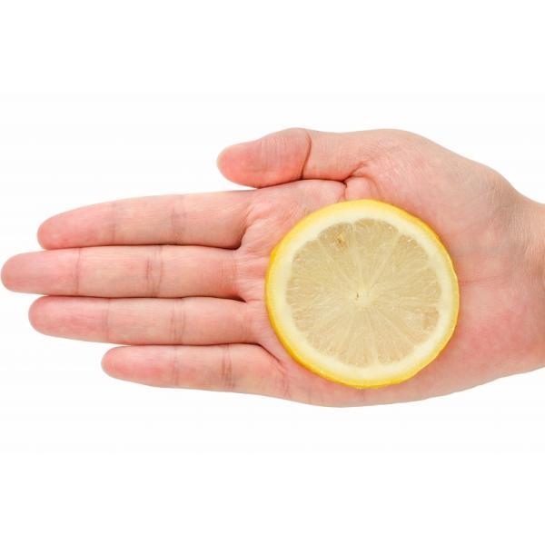 冷凍レモン スライス 500g ×1パック 輪切り カット済み レモン スライス レモンサワー レモネード フルーツジュース はちみつレモン レモンティー|gourmet-no-ousama|06