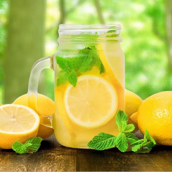 冷凍レモン スライス 500g ×1パック 輪切り カット済み レモン スライス レモンサワー レモネード フルーツジュース はちみつレモン レモンティー|gourmet-no-ousama|08