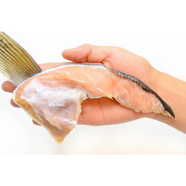(サーモン 鮭 サケ) 鮭カマ(30〜36枚前後・冷凍時総重量3kg・真空パック)|gourmet-no-ousama|03