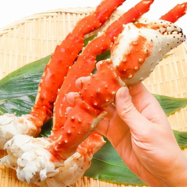 タラバガニ2.6kg前後(超極太7Lサイズ×2肩)(BBQ バーベキュー)|gourmet-no-ousama|10