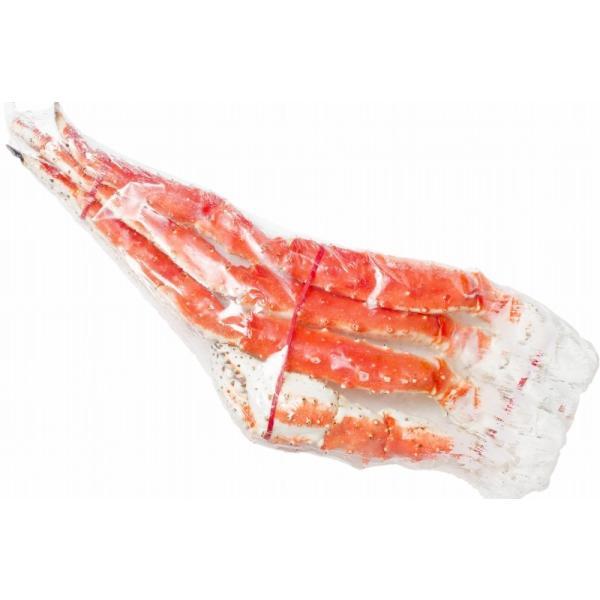 タラバガニ1.3kg前後(超極太7Lサイズ・1肩)(BBQ バーベキュー) gourmet-no-ousama 17