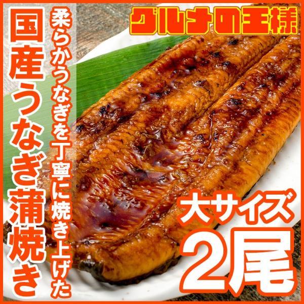国産うなぎ蒲焼き 大サイズ 平均165g前後×2尾|gourmet-no-ousama