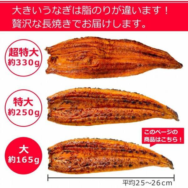 国産うなぎ蒲焼き 大サイズ 平均165g前後×2尾|gourmet-no-ousama|03