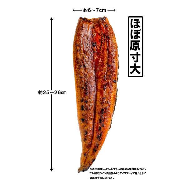 国産うなぎ蒲焼き 大サイズ 平均165g前後×2尾|gourmet-no-ousama|04