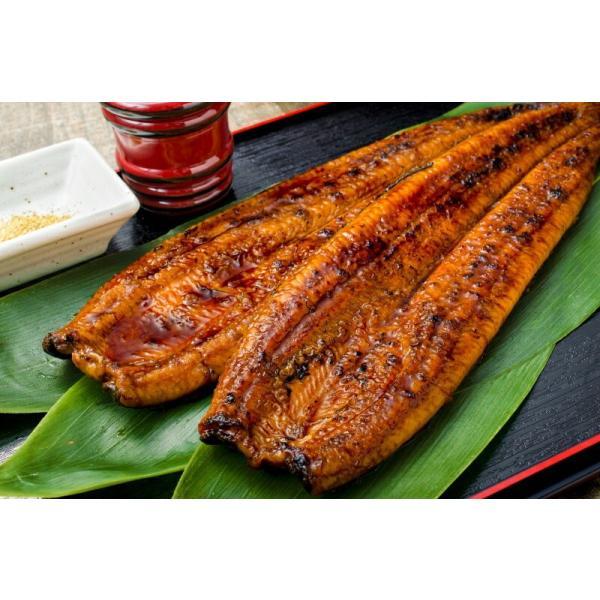 国産うなぎ蒲焼き 大サイズ 平均165g前後×2尾|gourmet-no-ousama|05