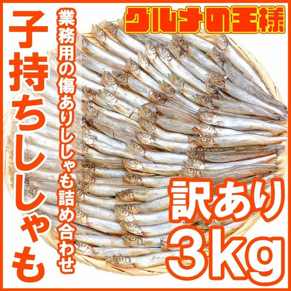 訳ありししゃも(子持ちシシャモ・業務用3kg・1kg×3袋)