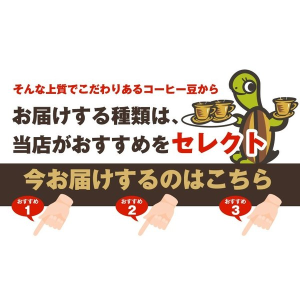 全国一律送料無料1000円ポッキリ【ネコポス】Qグレードお試し福袋(Qコス・Qグァテ・Qニカ/各100g)|gourmetcoffee|04