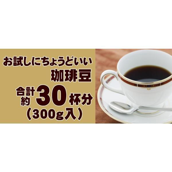 全国一律送料無料1000円ポッキリ【ネコポス】Qグレードお試し福袋(Qコス・Qグァテ・Qニカ/各100g)|gourmetcoffee|08