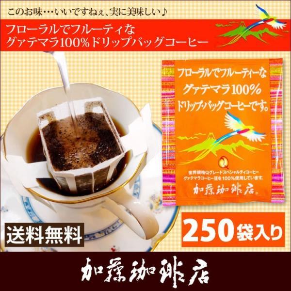 グァテマラ珈琲100%ドリップバッグコーヒー250袋入りセット【全国一律送料無料】/ドリップコーヒー gourmetcoffee