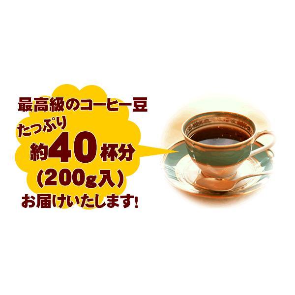 ルックデラックスII 10カップコーヒーメーカー付福袋[Qグァテ200・鯱200/各200g]メリタ(Melitta)|gourmetcoffee|02