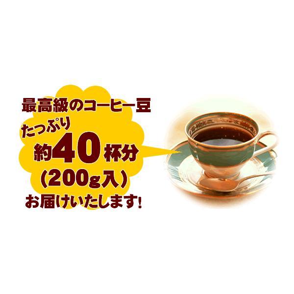 バイメタルコーヒーメーカー付福袋[Qグァテ200・鯱200/各200g]メリタ(Melitta)|gourmetcoffee|02