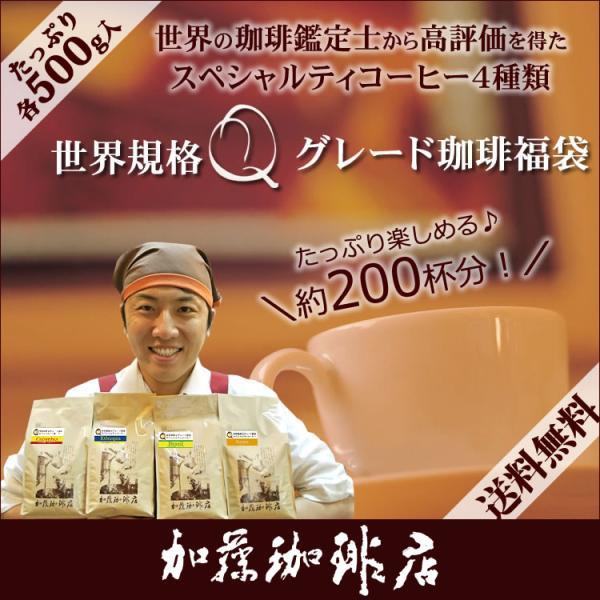 世界規格Qグレード珈琲福袋(お菓子・Qグァテ・Qホン・Qニカ・Qミャンマー)  送料無料 / 珈琲豆 コーヒー豆 コーヒー お中元 暑中見舞い お祝い ギフト|gourmetcoffee