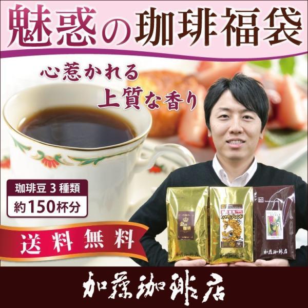 魅惑の珈琲福袋(お菓子・レジェ・金・鯱)/珈琲豆|gourmetcoffee