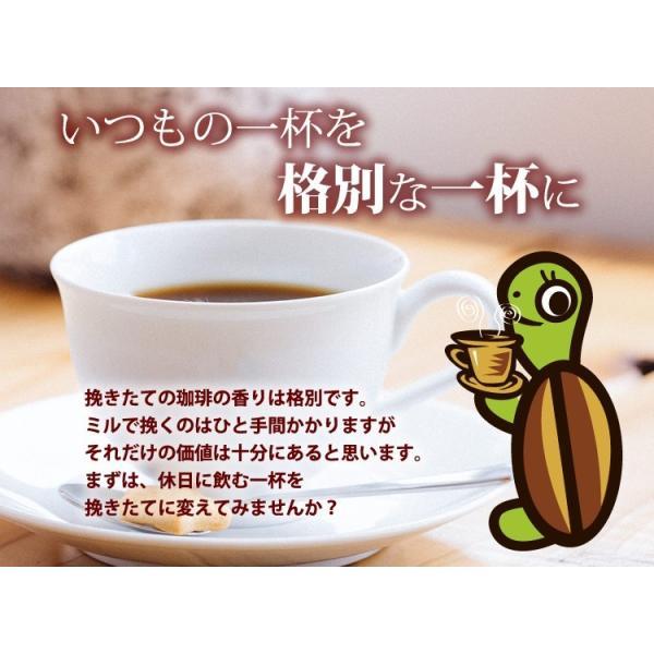 電動ミル 電動コーヒーミル コーヒー豆 コーヒー  珈琲福袋 冬500g送料無料 メリタ Melitta ECG62-3W ECG62-1B 珈琲 ギフト 加藤珈琲|gourmetcoffee|05