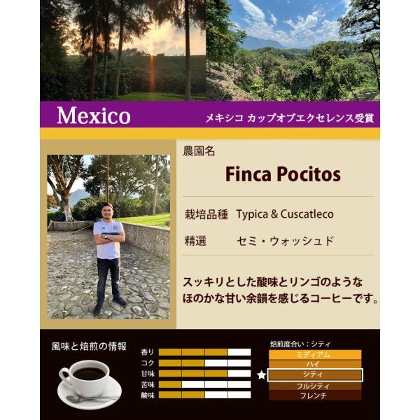 カップオブエクセレンス2種類飲み比べA (Cメキ・Cホン)/珈琲豆|gourmetcoffee|02