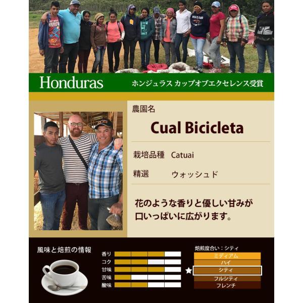 カップオブエクセレンス2種類飲み比べA (Cメキ・Cホン)/珈琲豆|gourmetcoffee|03