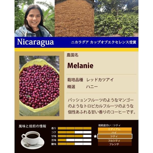 カップオブエクセレンス3種類飲み比べH (Cグァテ・Cルワ・Cブル/各500g)/珈琲豆|gourmetcoffee|03