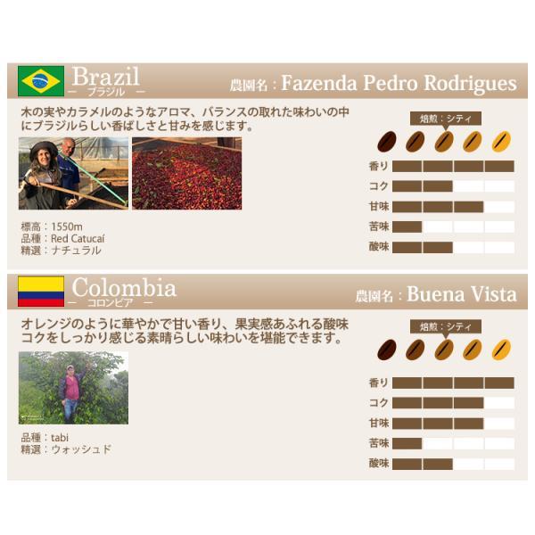 【豆のまま】カップオブエクセレンス自由に選べる3種類飲み比べセット (各100g・COEDB)/珈琲豆|gourmetcoffee|04