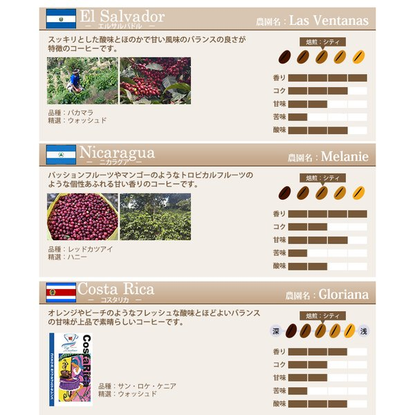 【豆のまま】カップオブエクセレンス自由に選べる3種類飲み比べセット (各100g・COEDB)/珈琲豆|gourmetcoffee|06