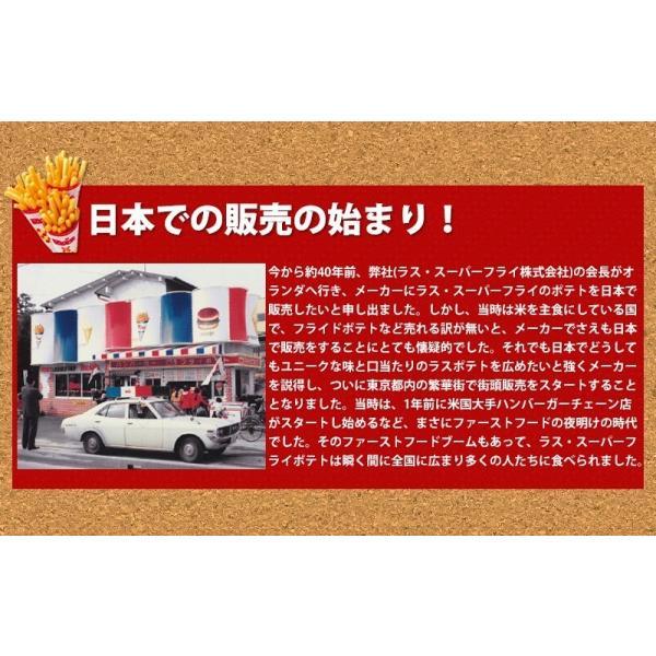 スーパーフライパウダー 2パックセット 送料無料 ラスポテト フライドポテト ロングポテト ラスポテト|gourtairiku|03