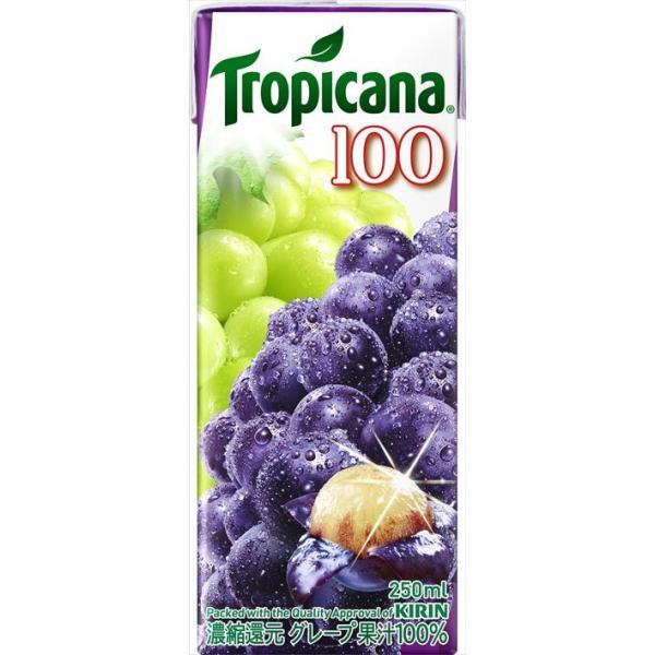 キリン トロピカーナ100%グレープ 250ml × 12本入り ケース|goyougura-okawa