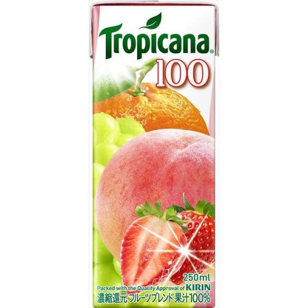 キリン トロピカーナ100%フルーツブレンド 250ml × 12本入り ケース|goyougura-okawa