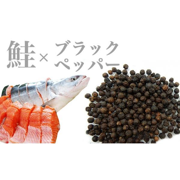 とば 鮭 北海道 やん衆どすこほい 鮭とば ブラックペッパー 40g メール便 ポイント消化 送料無料 胡椒 コショウ  おつまみ 簡易包装 トバ シャケ 珍味 ポイント|gplace|03