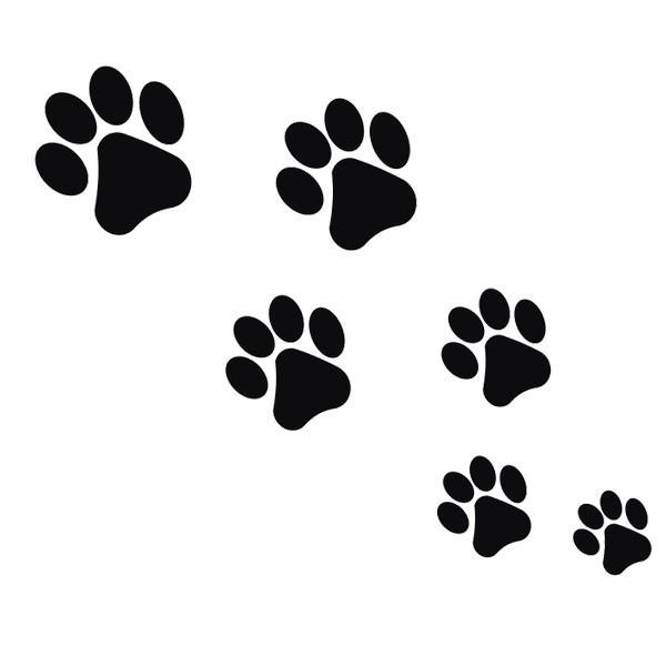 猫 首輪 小型犬 犬用首輪 鈴付き かわいい おしゃれ ペット用首輪 ハート キラキラ ラインストーン 可愛い ワンちゃん ネコちゃん|grace-jp|20