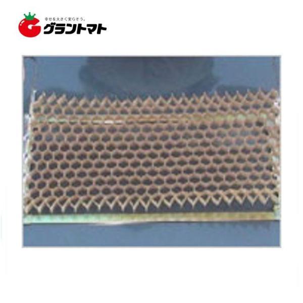 チェーンポット CP-303 播種育苗用資材 日本甜菜製糖(ニッテン)