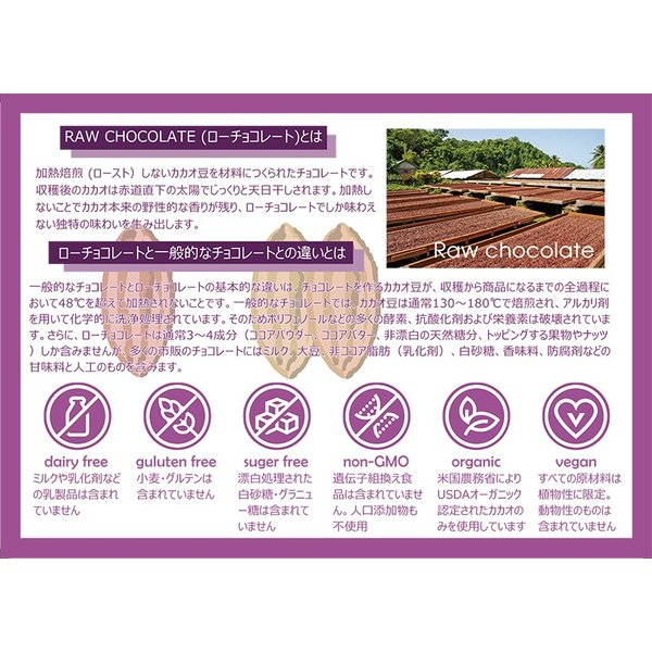 KAORU CHOCOLAT ローチョコレート アソート(4個) 乳化剤不使用 グルテンフリー ビーガンスイーツ|greedy|04