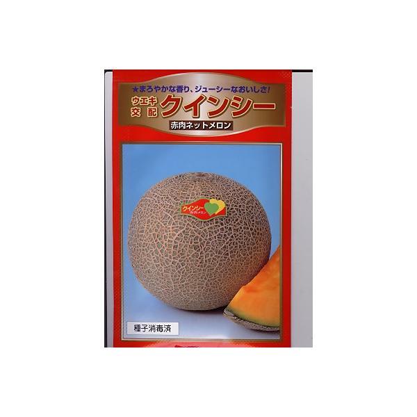 メロンの種 ウエキ交配・・・クインシーメロン・・・<横浜植木のメロンです。種のことならお任せグリーンデポ>