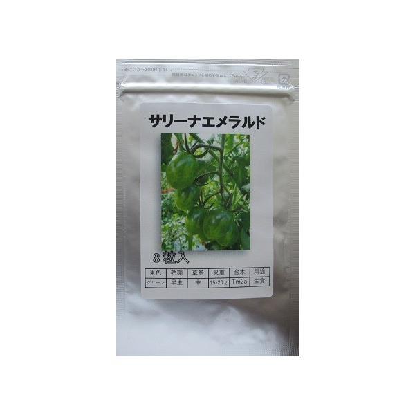 サリーナエメラルド  パイオニアエコサイエンスのミニトマト品種
