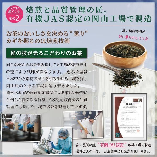 ごぼう茶 2g×40包 国産 恵み茶屋|green-landscape-inc|05
