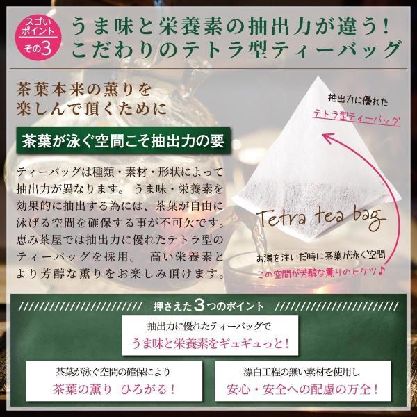 ごぼう茶 2g×40包 国産 恵み茶屋|green-landscape-inc|06