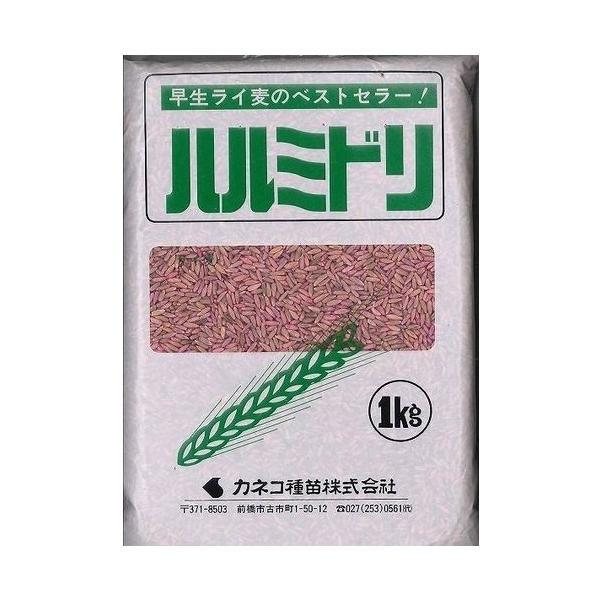 緑肥 ライ麦  ハルミドリ 1kg  カネコ種苗