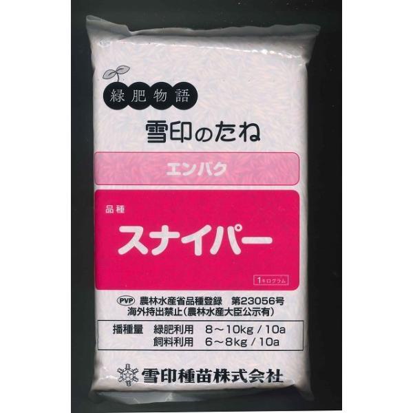 緑肥 エンバク スナイパー 1kg  雪印種苗