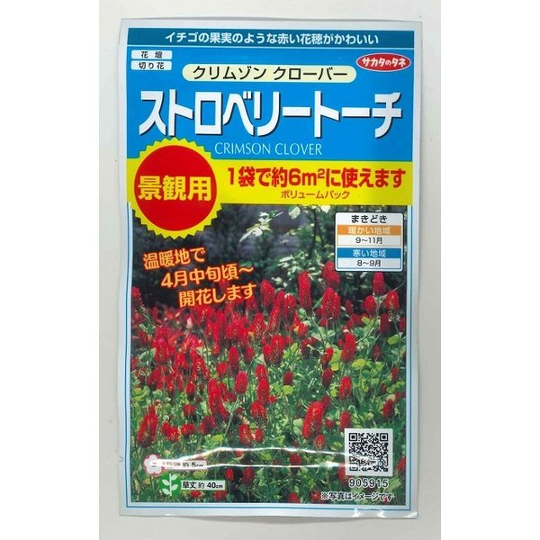 花の種 ストロベリー トーチ クリムゾンクローバー30g サカタのタネ(実咲300)