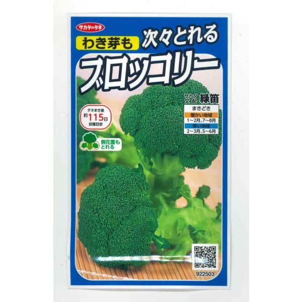 ブロッコリー  緑笛 サカタのタネ 実咲