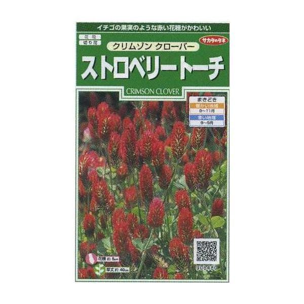 花の種 ストロベリー トーチ クリムゾンクローバー サカタのタネ(実咲200)
