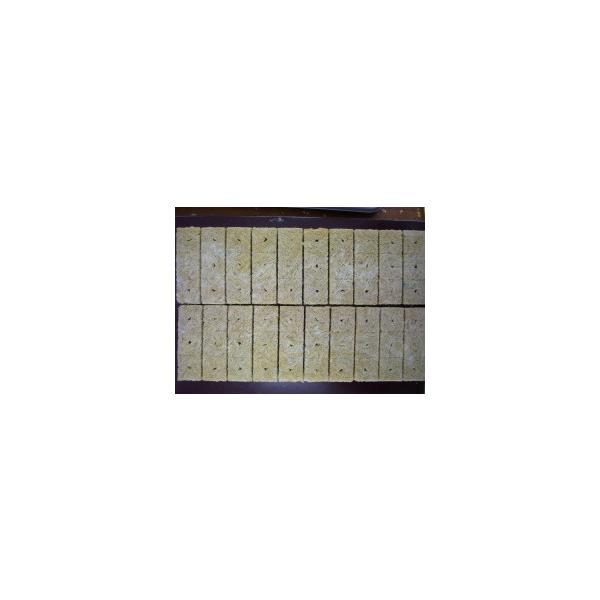 接木・生産資材 栽培マット ロックウールブロック 60ピース