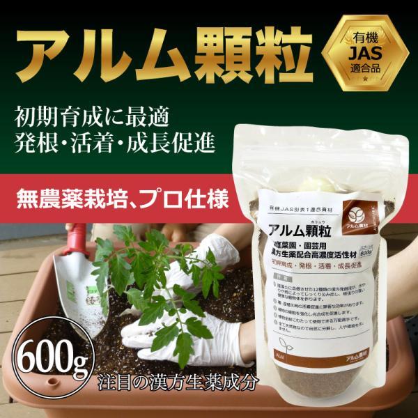 『アルム顆粒 恵(めぐみ)』 600g greenfront