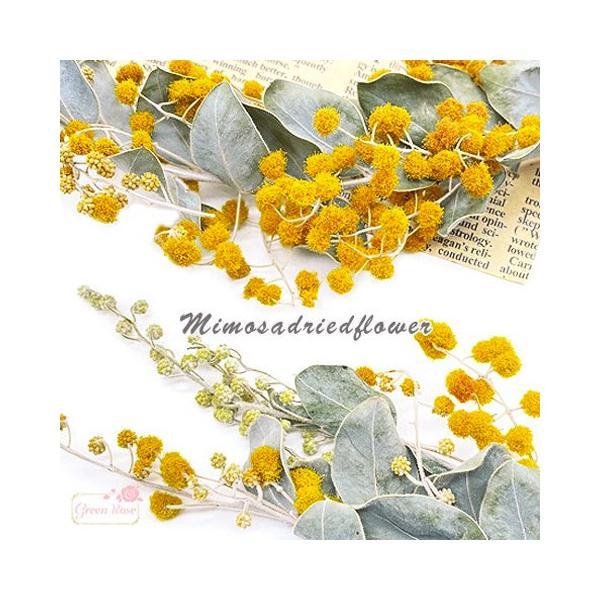 ミモザ アカシア ドライフラワー 黄色 レジン ハーバリウム  花材   5g 2107 f51
