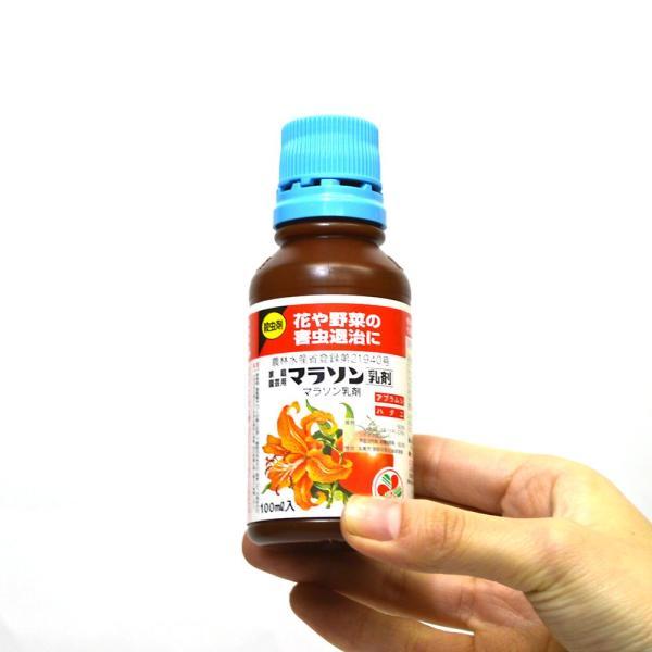 殺虫剤  マラソン乳剤 100ml 住友化学園芸|greentime|04
