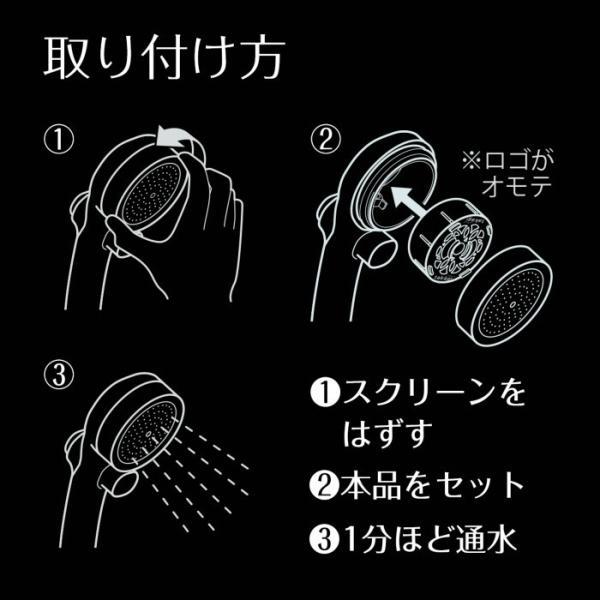 シャワーヘッド 塩素除去 カプセル Miz-e 浄水 シャワー カートリッジ 2個入 ミズイー JSC001 送料無料 タカギ takagi 安心の日本製|greentools|04