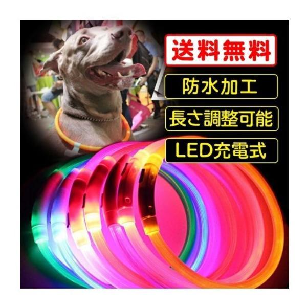 【送料無料】光る首輪 犬用 USB 防水 充電式 LED ペット用!夜の犬の散歩を安全に!大型犬から小型犬もOK!