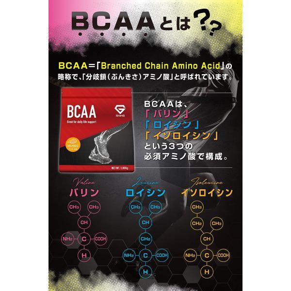 GronG(グロング) BCAA 含有率84% マンゴー 風味 1kg (100食分)  分岐鎖アミノ酸 サプリメント 国産|grong|05