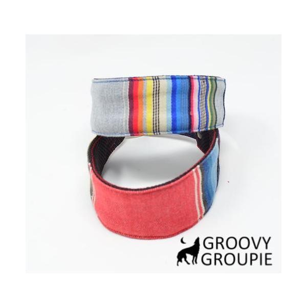 マルチストライプ!ハーフチョーク ミニピン・イタグレにぴったり! |groovygroupie|02