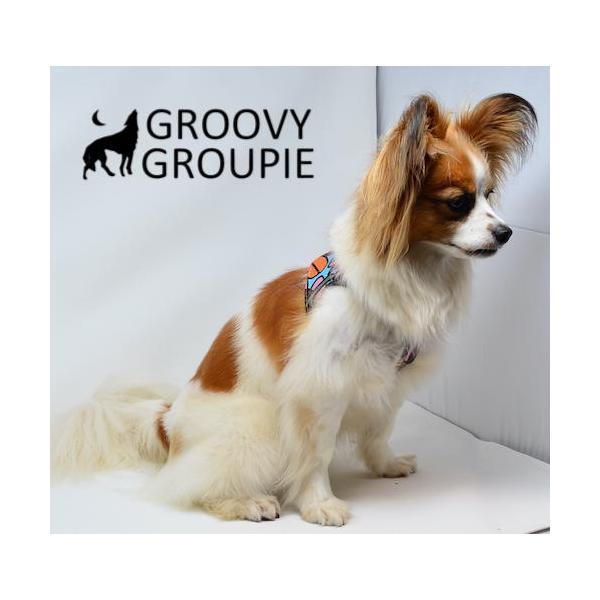 小型犬用 ハーネス  ソフト ベスト型  南国の庭&デニム  犬 胴輪 ボディハーネス 日本製  groovygroupie 11